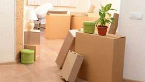 About World Packers and Movers Hyderabad